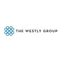 더웨슬리그룹, 비트파인더의 투자자