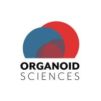 오가노이드사이언스, 에이티넘인베스트먼트가 투자한 기업